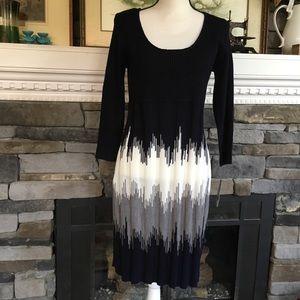 Sandra Darren chevron sweater dress 043535